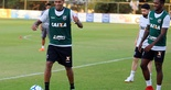 [12-06-2018] Atlético MG x Ceará_Treino_Toca da Raposa2 - 25  (Foto: Mauro Jefferson / cearasc.com)