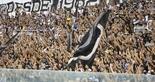 [28-07-2018] Ceara 1 x 0 Fluminense - Segundo tempo 1 - 44  (Foto: Mauro Jefferson / Cearasc.com)