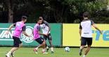 [25-08-2018] Treino no CT do Palmeiras - 23  (Foto: Mauro Jefferson / cearasc.com)
