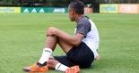 [25-08-2018] Treino no CT do Palmeiras 2 - 2  (Foto: Mauro Jefferson / cearasc.com)