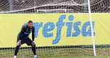 [25-08-2018] Treino no CT do Palmeiras 2 - 5  (Foto: Mauro Jefferson / cearasc.com)