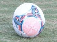 Grupo alvinegro vai iniciar preparação para enfrentar o Figueirense