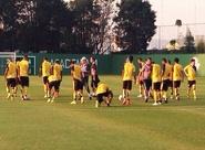 Pensando no Botafogo, alvinegros treinaram nesta tarde